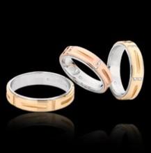 Rings XVI